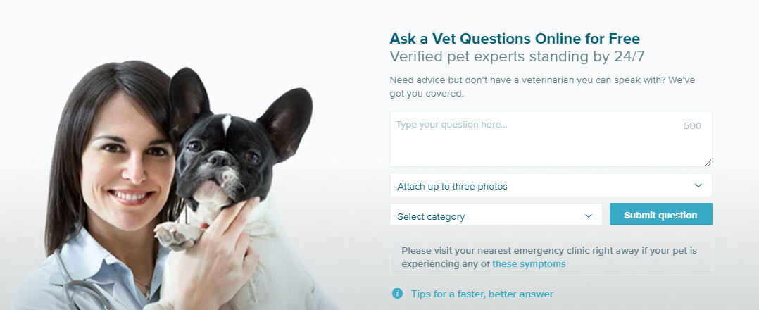 PetCoach is a free Live Chat with a veterinarian, available 24/7